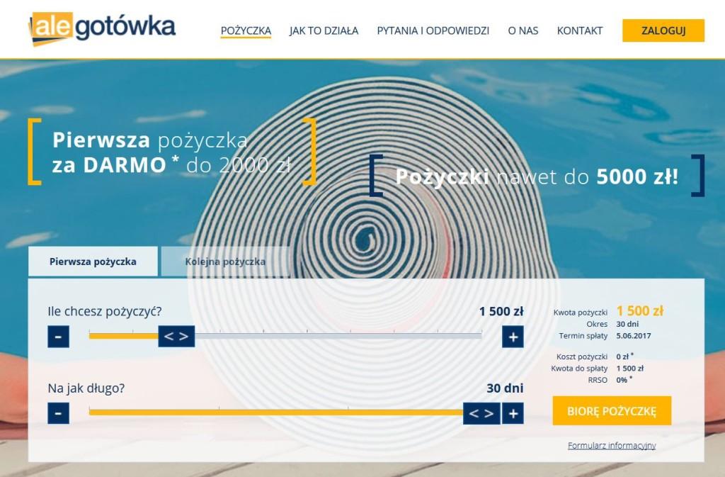 alegotowka portal strona firmy screen